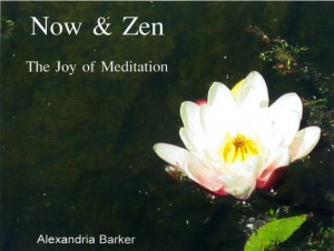 Now and Zen book cover